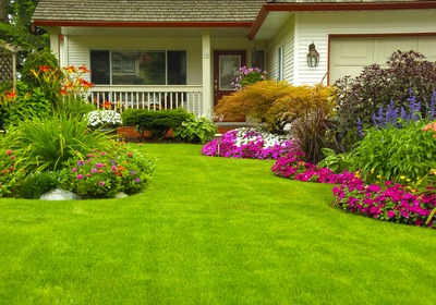 3 Tips for Better Landscaping Your Guests Will Love