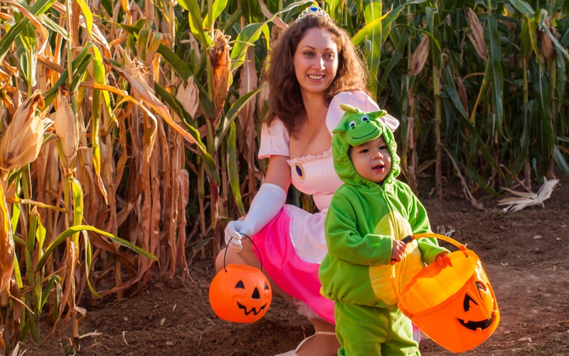 Get Lost… At Mount Dora's Favorite Fall Maze